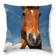 The Curious Horse Throw Pillow