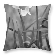 The Daffodil In Black-and-white Throw Pillow