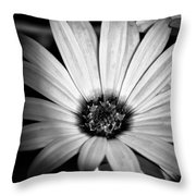 The Daisy II Throw Pillow