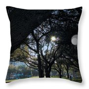 The Day's Reflection Limited Edition Bodecoarts Throw Pillow