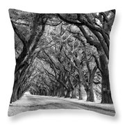 The Deep South Monochrome Throw Pillow