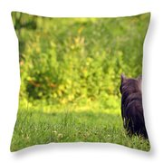 The Deer Hunter Throw Pillow