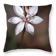 The Delicate Pastel Pink Flower Throw Pillow