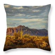 The Desert Golden Hour  Throw Pillow