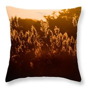 The Dunes- Fire Island Throw Pillow