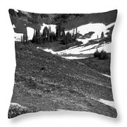 The East Slopes Of Mount Rainier II Throw Pillow