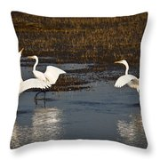 The Egrets Throw Pillow
