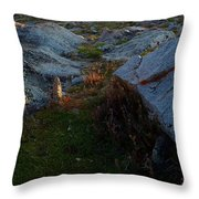 The End Of The Spear Throw Pillow
