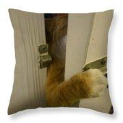 The Escape Artist Throw Pillow