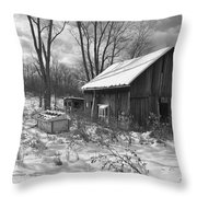 The Evolution Of Time Throw Pillow