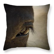 The Eyes Are The Window To The Soul Throw Pillow