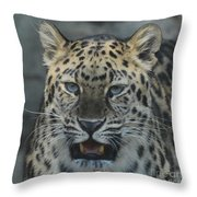 The Eyes Of A Jaguar Throw Pillow