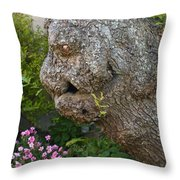 The Face In The Tree Throw Pillow