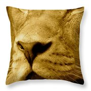 The Face Of God In Sepia Tones Throw Pillow