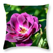 The Fallen Petal Throw Pillow