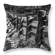 The Fence Throw Pillow