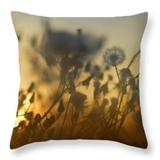The Fire Of The Sun Throw Pillow