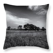 The First Homestead In Black And White Throw Pillow