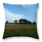 The First Homestead Throw Pillow