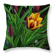 The First One Out Throw Pillow