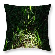 The Flames Of Green Throw Pillow