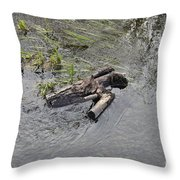 The Floating Island Throw Pillow