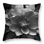 The Flower Of One Night Throw Pillow