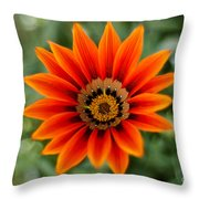The Focused Eye Throw Pillow