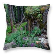 The Forest Trail Throw Pillow