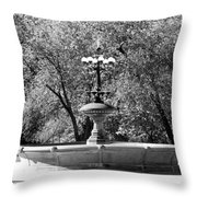 The Fountain In Black And White Throw Pillow
