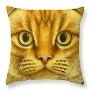 The French Orange Cat Throw Pillow