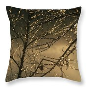 The Frozen Branches Of A Small Birch Throw Pillow