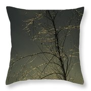 The Frozen Branches Of A Small Tree Throw Pillow