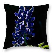 The Glow Of Spring Throw Pillow
