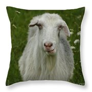 The Goat Throw Pillow