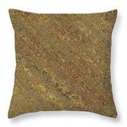 The Gold Angle Throw Pillow
