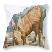 The Golden Ass Throw Pillow