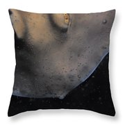The Golden Eyes Of A Sparcely Spotted Throw Pillow