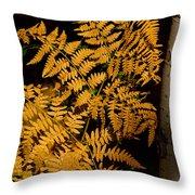 The Golden Fern Throw Pillow