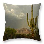 The Golden Saguaro  Throw Pillow