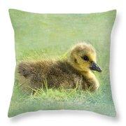The Gosling Throw Pillow