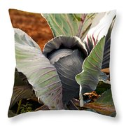 The Great Cabbage Throw Pillow