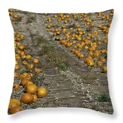 The Great Pumpkin Patch Trail Throw Pillow