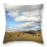 The Great Wide Open Throw Pillow