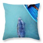 The Grey Seal Throw Pillow
