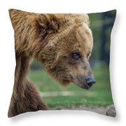 The Grizzly In Spring Throw Pillow