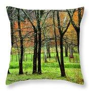 The Grove Throw Pillow