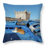 The Guardian 02 Throw Pillow