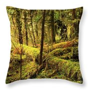 The Hall Of Mosses Throw Pillow