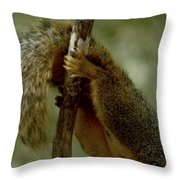 The Hang On Tail Throw Pillow